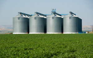 Mails Store -Agriculture Industry Email List - Agriculture Industry Mailing Lists
