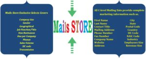 Mails Store - C-Level Executives Mailing List - C-Level Executives Email Lists - C-Level Executives Mailing Addresses - C-Level Executives Email Addresses