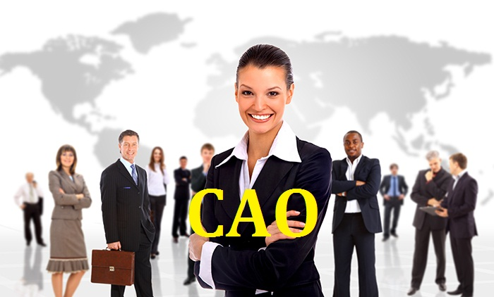 Mails STORE Mails-Store-CAO-Email-List-CAO-Mailing-List-CAO-Email-Addresses-CAO-Mailing-Addresses CAO Email Lists | CAO Mailing Addresses | Chief Accountant Officers Database