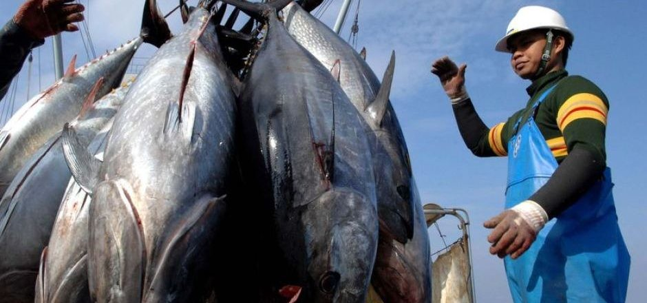 Mails STORE 59-Fishing-Industry-Email-List Fishing Industry Email List | Fishing Industry Mailing Addresses Database
